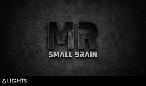 Mr Small Brain Logotype